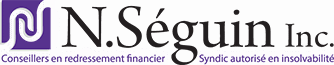 N.Séguin inc. Syndic autorisé en insolvabilité Logo
